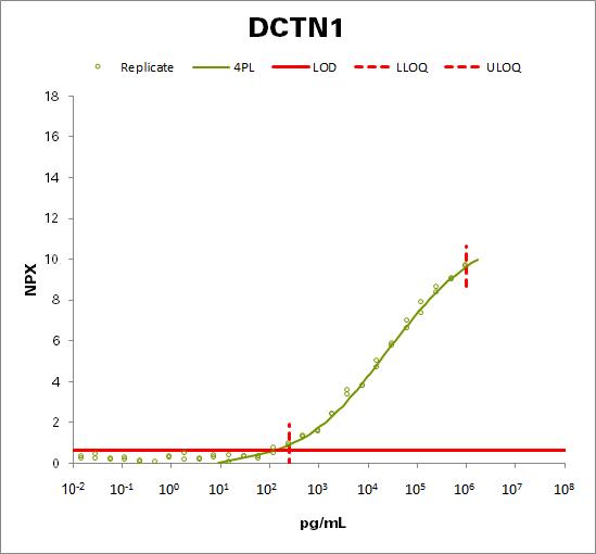 Dynactin subunit 1 (DCTN1)