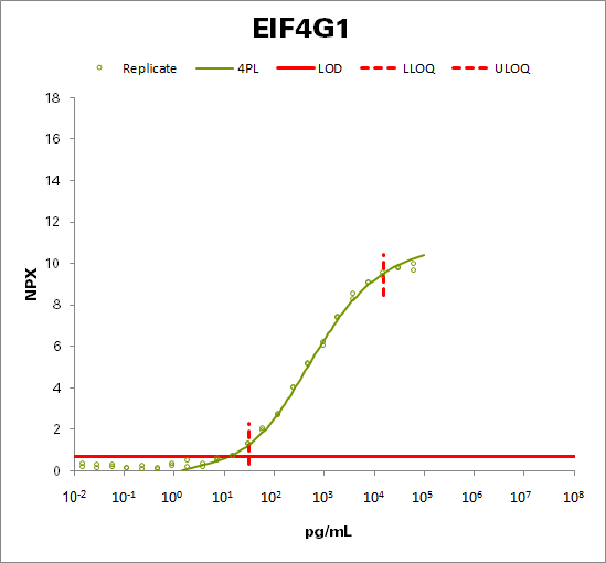 Eukaryotic translation initiation factor 4 gamma 1 (EIF4G1)