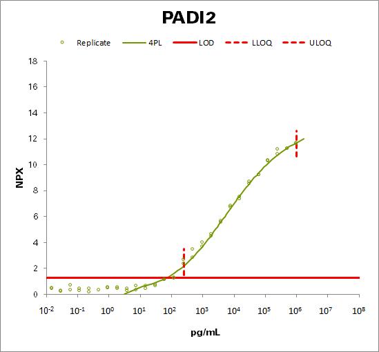 Protein-arginine deiminase type-2 (PADI2)