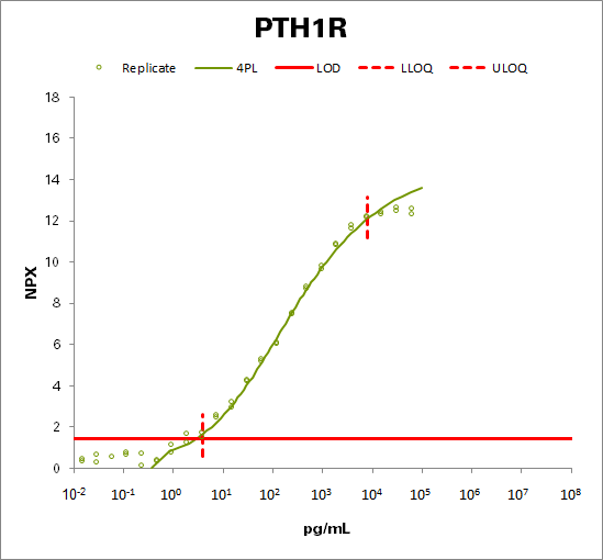 Parathyroid hormone/parathyroid hormone-related peptide receptor (PTH1R)