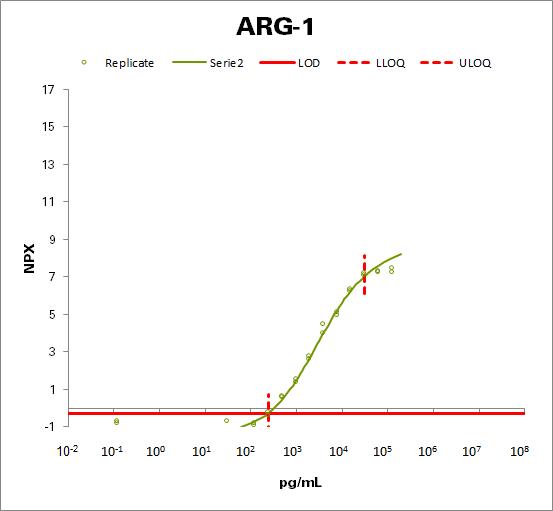Arginase-1 (ARG1)