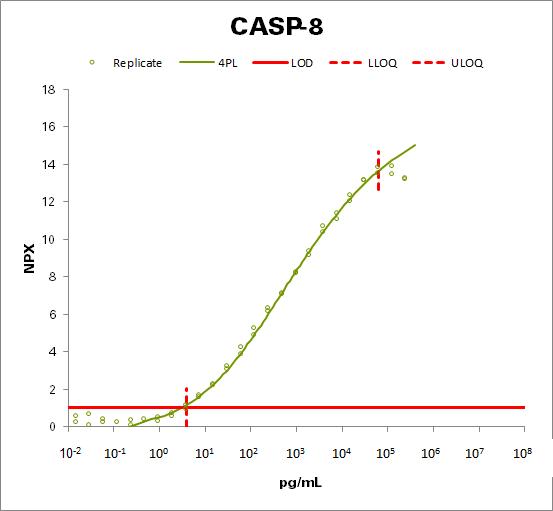 Caspase-8 (CASP-8 )
