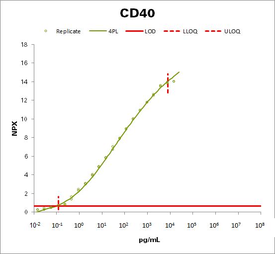CD40L receptor (CD40)