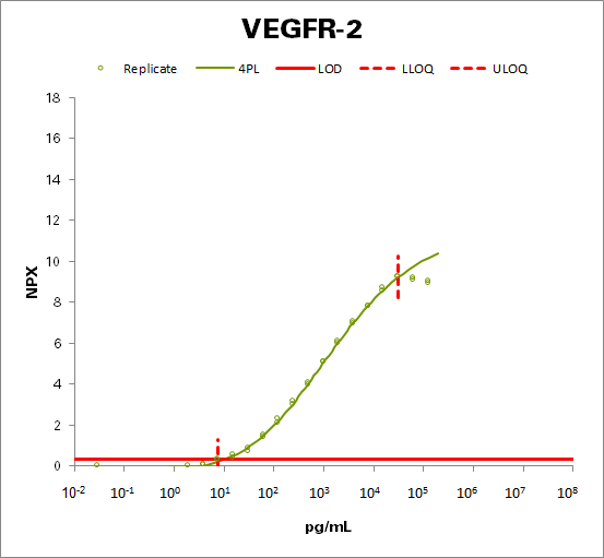 Vascular endothelial growth factor receptor 2  (VEGFR-2)