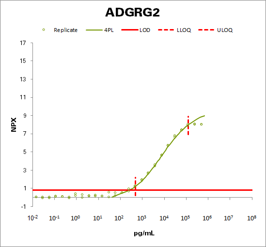 Adhesion G-protein coupled receptor G2 (ADGRG2)