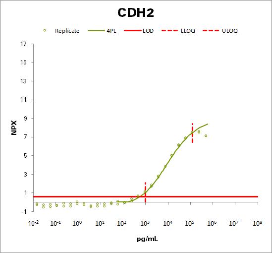 Cadherin-2 (CDH2)