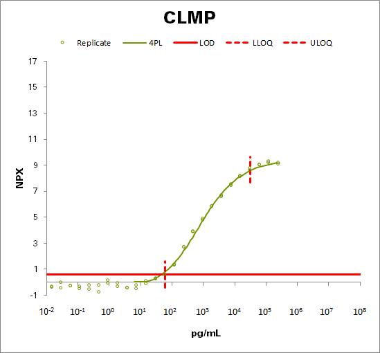 CXADR-like membrane protein (CLMP)