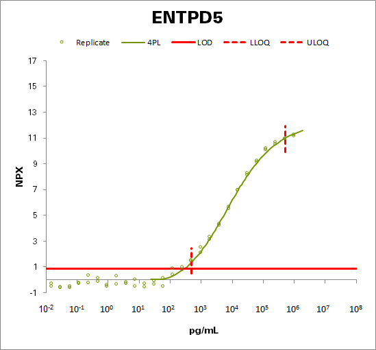 Ectonucleoside triphosphate diphosphohydrolase 5 (ENTPD5)