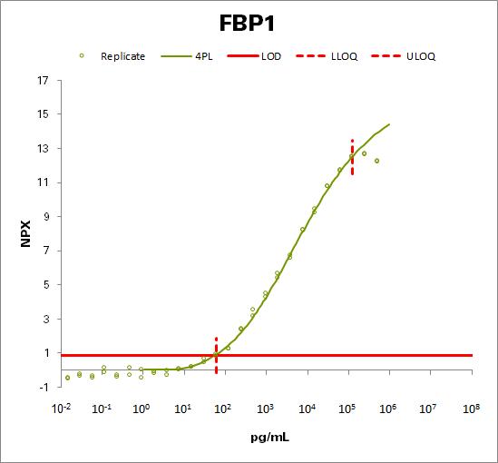 Fructose-1,6-bisphosphatase 1 (FBP1)