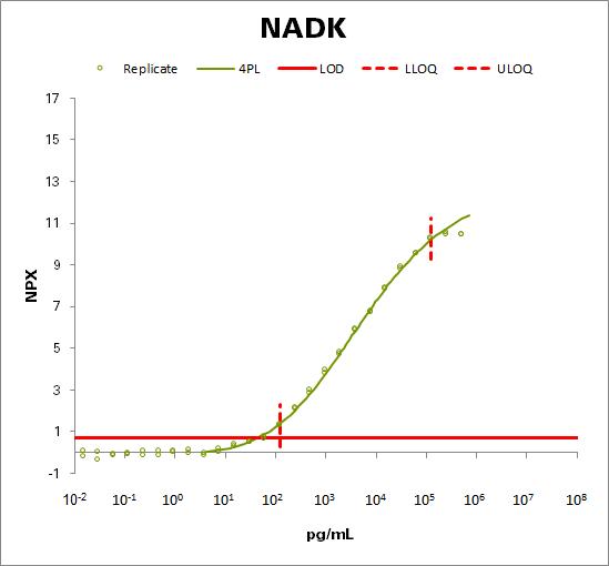 NAD kinase (NADK)