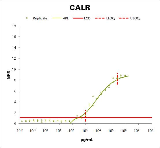 Calreticulin (CALR)