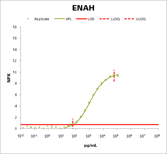 Protein enabled homolog (ENAH)
