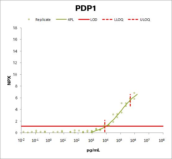 [Pyruvate dehydrogenase [acetyl-transferring]]-phosphatase 1, mitochondrial (PDP1)
