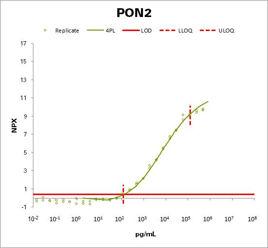 Serum paraoxonase/arylesterase 2 (PON2)