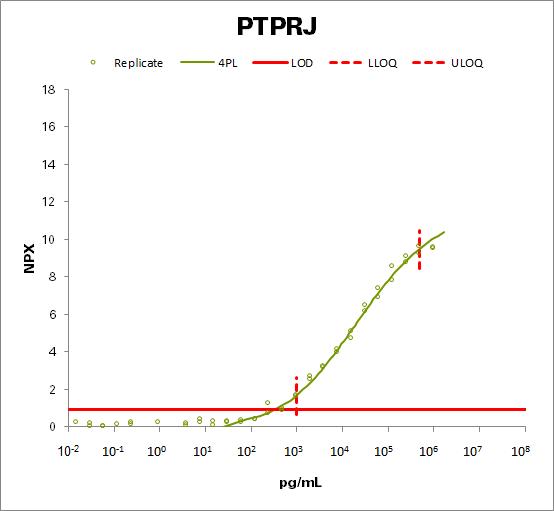 Receptor-type tyrosine-protein phosphatase eta (PTPRJ)