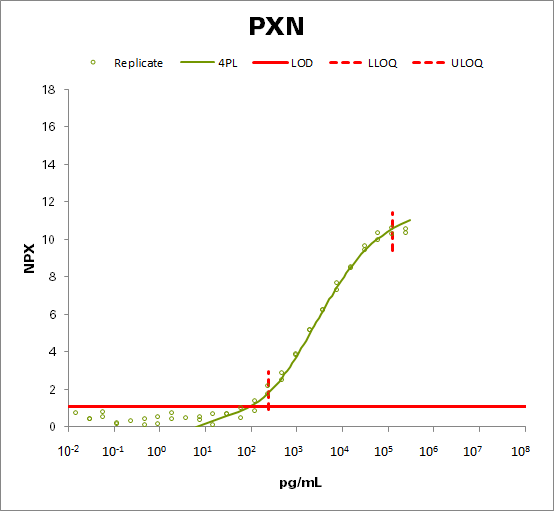Paxillin (PXN)