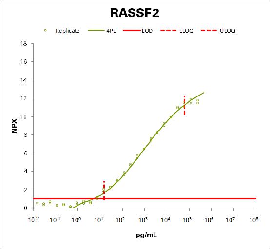 Ras association domain-containing protein 2 (RASSF2)