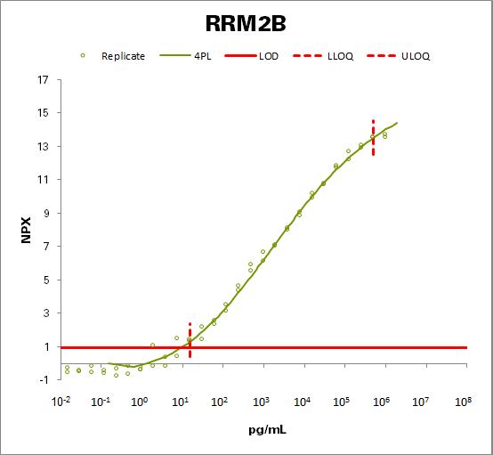 Ribonucleoside-diphosphate reductase subunit M2 B (RRM2B)