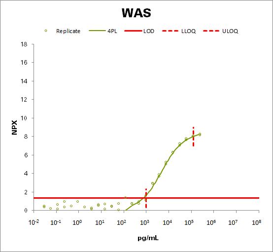 Wiskott-Aldrich syndrome protein (WAS)