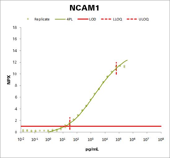 Neural cell adhesion molecule 1  (NCAM1)