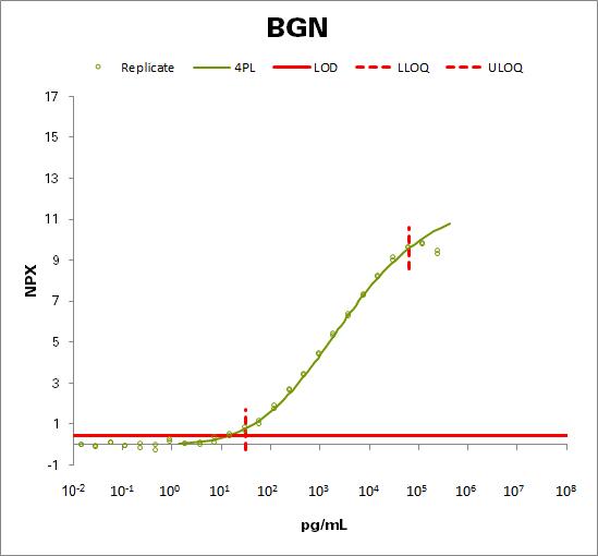 Biglycan (BGN)