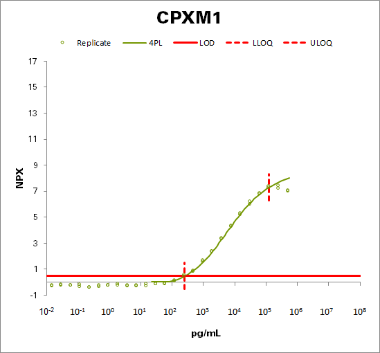Probable carboxypeptidase X1 (CPXM1)