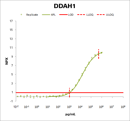 N(G),N(G)-dimethylarginine dimethylaminohydrolase 1  (DDAH1)