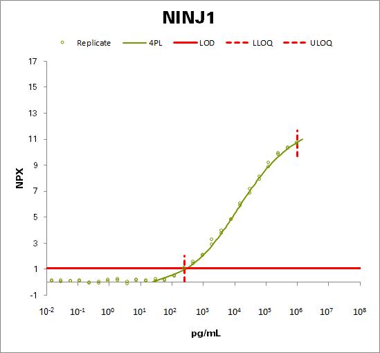 Ninjurin-1 (NINJ1)