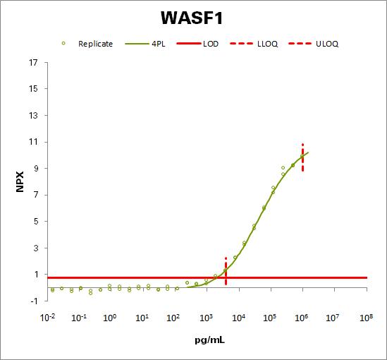Wiskott-Aldrich syndrome protein family member 1  (WASF1)