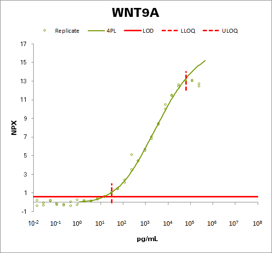 Protein Wnt-9a (WNT9A)