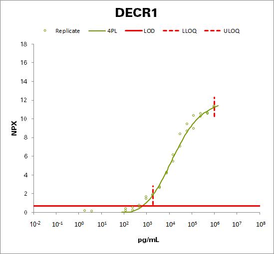 2,4-dienoyl-CoA reductase, mitochondrial (DECR1)