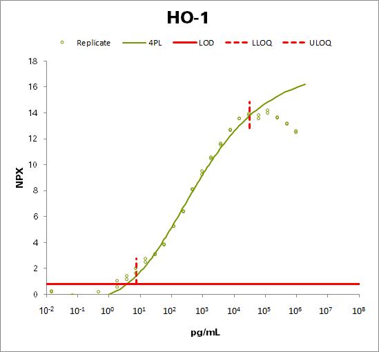 Heme oxygenase 1 (HO-1)