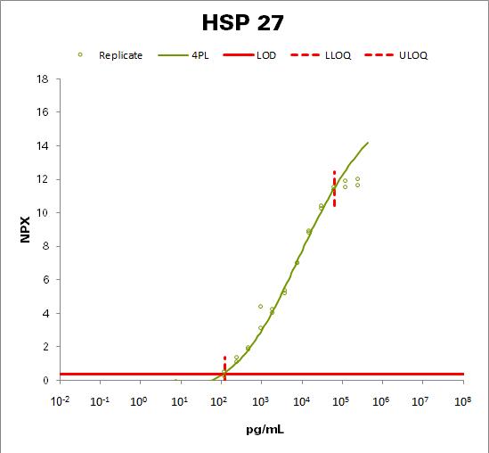 Heat shock 27 kDa protein (HSP 27)
