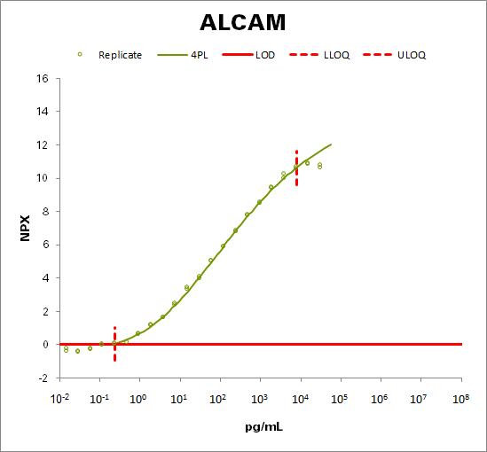 CD166 antigen (ALCAM)