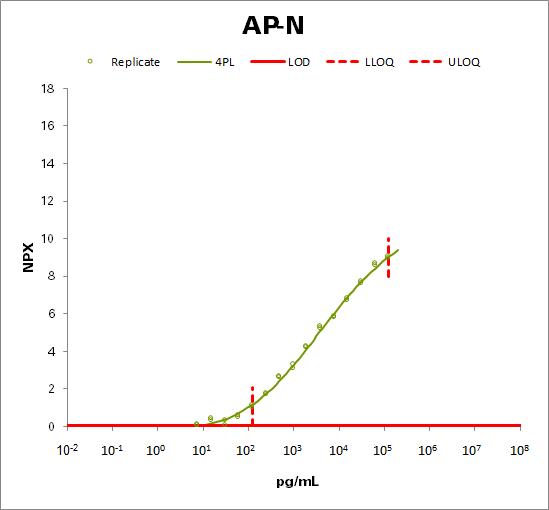 Aminopeptidase N (AP-N)