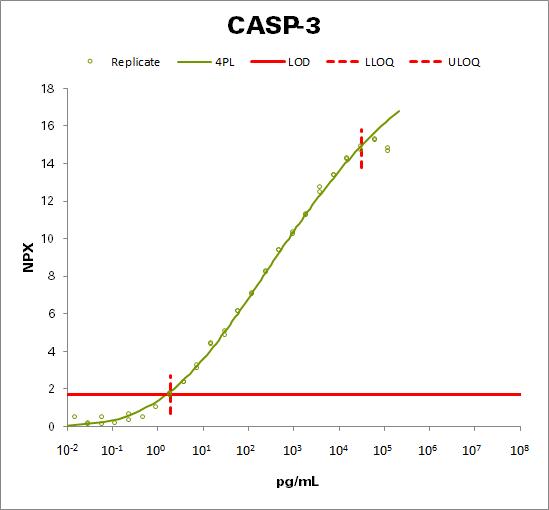 Caspase-3  (CASP-3)