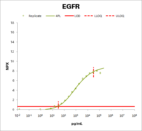 Epidermal growth factor receptor  (EGFR )