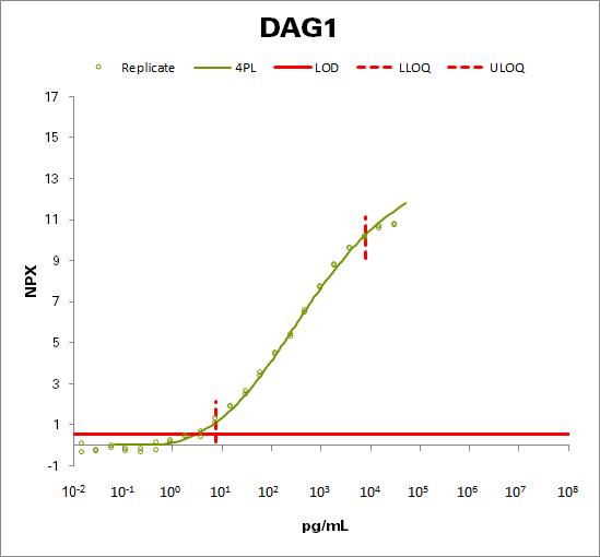 Dystroglycan (DAG1)