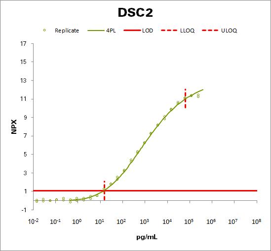 Desmocollin-2 (DSC2)