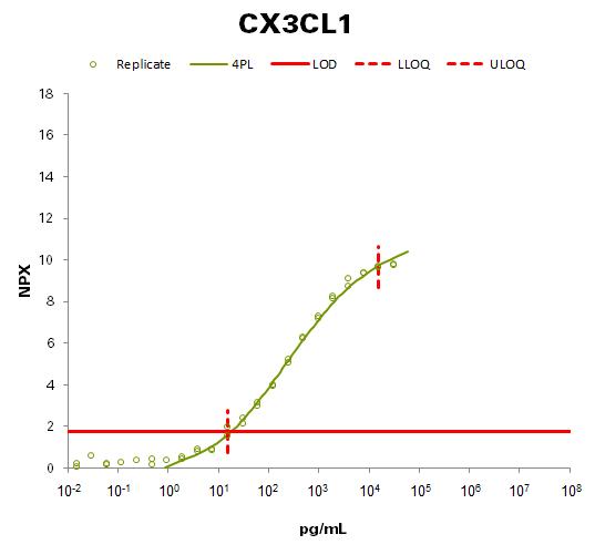 Fractalkine (CX3CL1 )