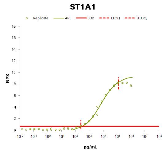 Sulfotransferase 1A1 (ST1A1)
