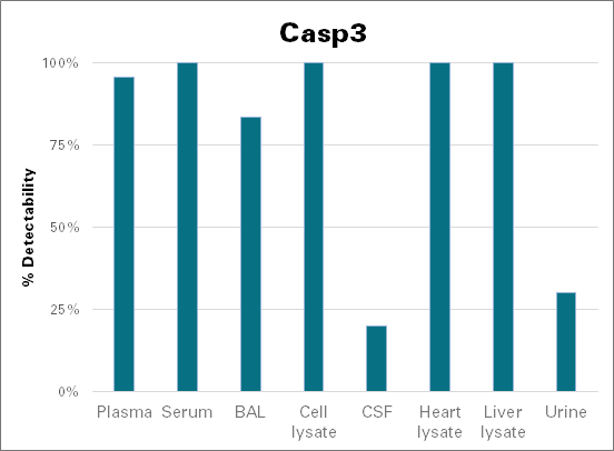 Caspase-3 - mouse (Casp3)