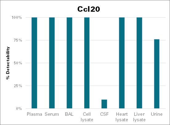 C-C motif chemokine 20 - mouse (Ccl20)
