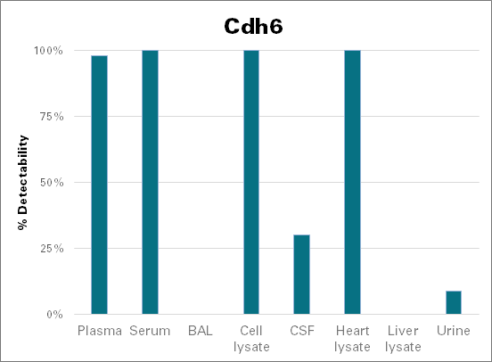 Cadherin-6 - mouse (Cdh6)