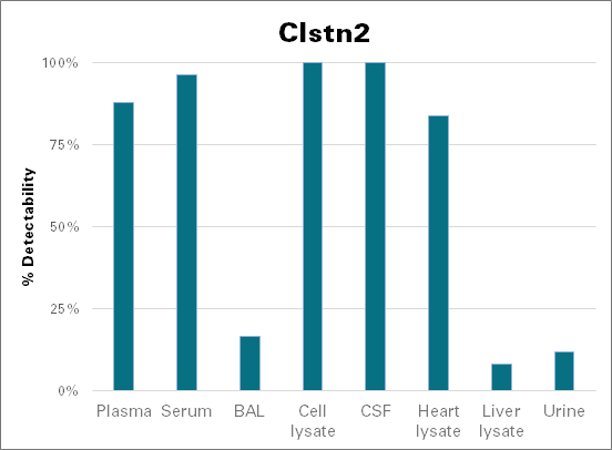 Calsyntenin-2 - mouse (Clstn2)