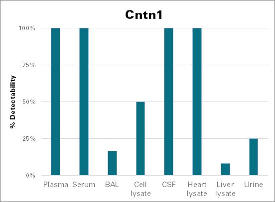 Contactin-1 - mouse (Cntn1)