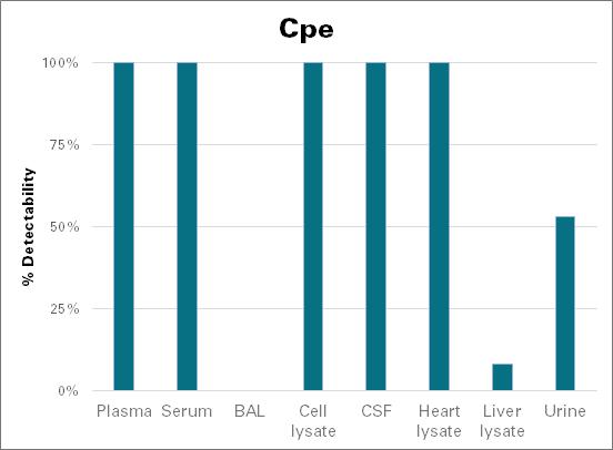 Carboxypeptidase E - mouse (Cpe)