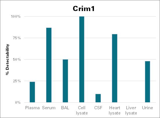 Cysteine-rich motor neuron 1 protein - mouse (Crim1)