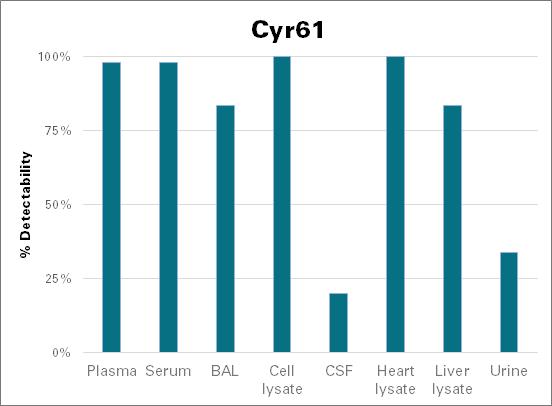 Protein CYR61 - mouse (Cyr61)