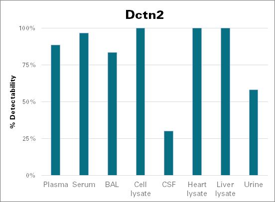 Dynactin subunit 2 - mouse (Dctn2)